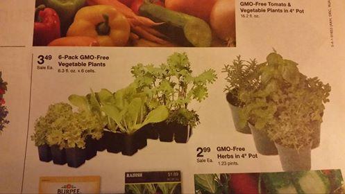 What Crops areGMO's?